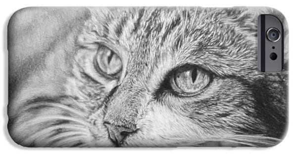 Beautiful Cat Drawings iPhone Cases - Chilled iPhone Case by Frances Vincent
