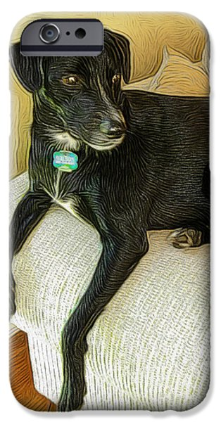 Setter Pointer Puppy iPhone Cases - Chillin on the Couch iPhone Case by Paul Gioacchini