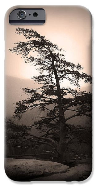Monotone iPhone Cases - Chimney Rock Lone Tree in Sepia iPhone Case by Kelly Hazel
