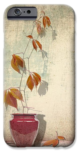 Interior Still Life iPhone Cases - Chinese Vase  iPhone Case by Artskratches