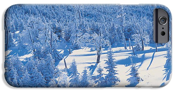 Snow Covered Trees iPhone Cases - Chino Nagano Japan iPhone Case by Panoramic Images