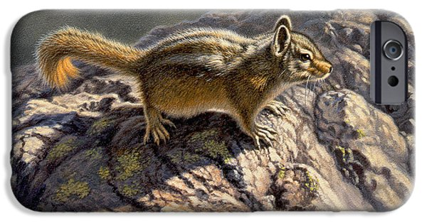 Chipmunk iPhone Cases - Chippy on the Rocks iPhone Case by Paul Krapf