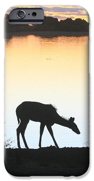 Silhoette iPhone Cases - Chobe River at Sunset iPhone Case by Karen Zuk Rosenblatt