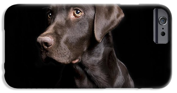 Recently Sold -  - Chocolate Lab iPhone Cases - Chocolate Lab on Black iPhone Case by Leah McDaniel