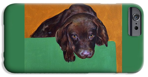 Chocolate Lab iPhone Cases - Chocolate Lab Puppy iPhone Case by Marcia Davis