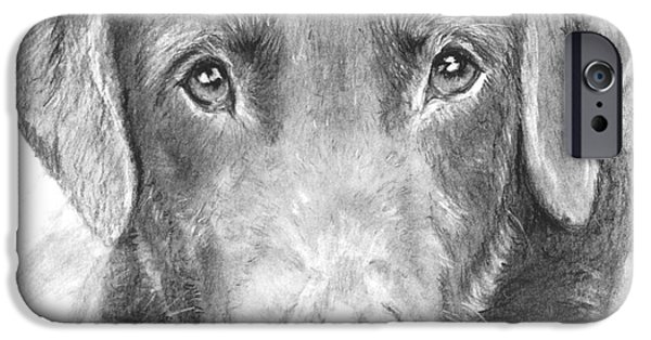 Chocolate Lab iPhone Cases - Chocolate Lab Sketched in Charcoal iPhone Case by Kate Sumners