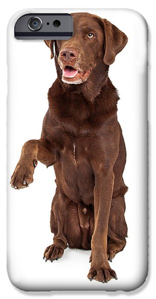 Working Dogs iPhone Cases - Chocolate Labrador Paw Extended iPhone Case by Susan  Schmitz
