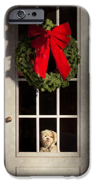 Hdr Look iPhone Cases - Christmas - Clinton NJ - Christmas puppy iPhone Case by Mike Savad