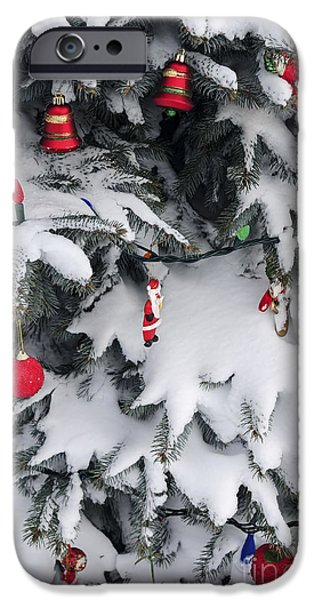 Snowy iPhone Cases - Christmas decorations on snowy tree iPhone Case by Elena Elisseeva