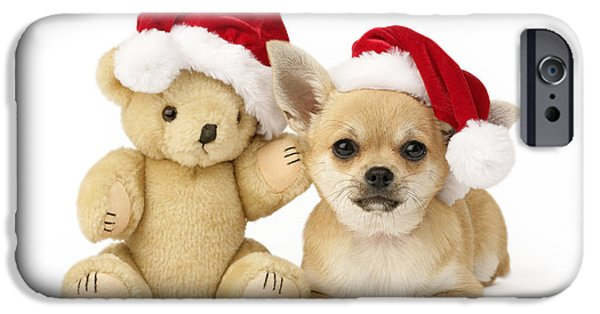 Xmas iPhone Cases - Christmas Dog And Teddy iPhone Case by Greg Cuddiford