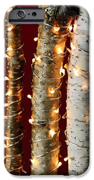 Christmas lights on birch branches iPhone Case by Elena Elisseeva