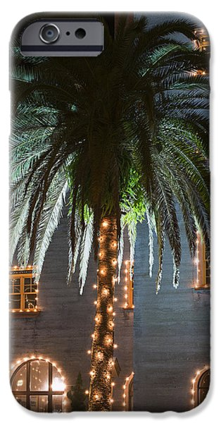 Christmas Holiday Scenery iPhone Cases - Christmas Palm iPhone Case by Kenneth Albin