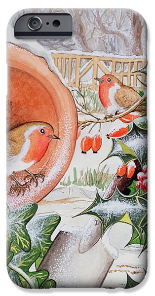 Berry iPhone Cases - Christmas Robins Wc iPhone Case by Tony Todd