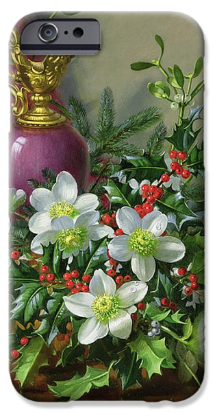 Flora iPhone Cases - Christmas roses iPhone Case by Albert Williams