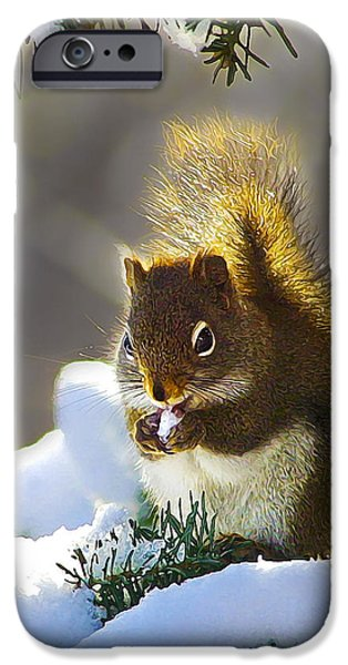 Small iPhone Cases - Christmas Squirrel iPhone Case by Bill Caldwell -        ABeautifulSky Photography