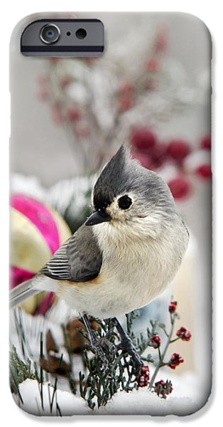 Titmouse iPhone Cases - Christmas Titmouse iPhone Case by Christina Rollo