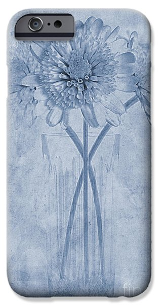 Close Focus Floral iPhone Cases - Chrysanthemum Cyanotype iPhone Case by John Edwards