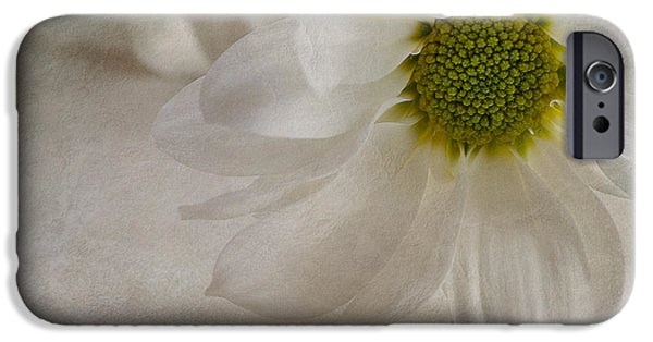 Chrysanthemum iPhone Cases - Chrysanthemum textures iPhone Case by John Edwards