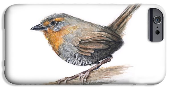 Chile iPhone Cases - Chucao Tapaculo Watercolor iPhone Case by Olga Shvartsur