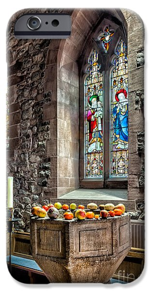 Decorative Benches iPhone Cases - Church Fruits iPhone Case by Adrian Evans