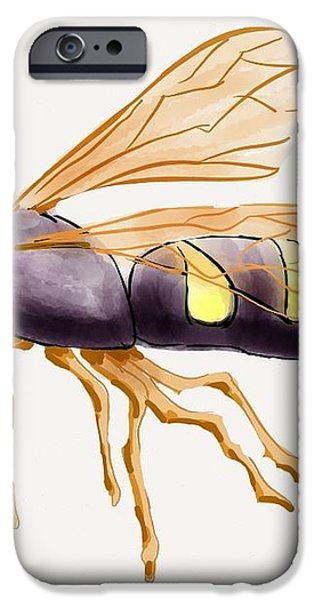 Cicada Killer Wasp iPhone Case by Stacy C Bottoms