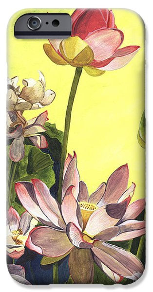 Bloom iPhone Cases - Citron Lotus 1 iPhone Case by Debbie DeWitt