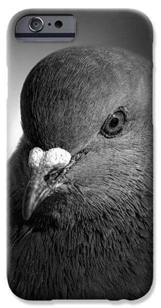 City Bird Gang Leader iPhone Case by Bob Orsillo