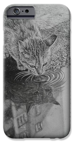 Beautiful Cat Drawings iPhone Cases - City Kitty iPhone Case by Frances Vincent