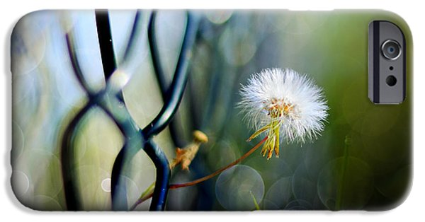 Garden Scene Digital iPhone Cases - Clash Of The Titans iPhone Case by Laura  Fasulo