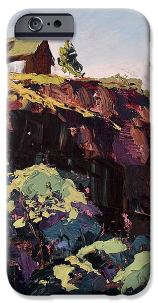 Cliff Hanger iPhone Case by Mary Giacomini