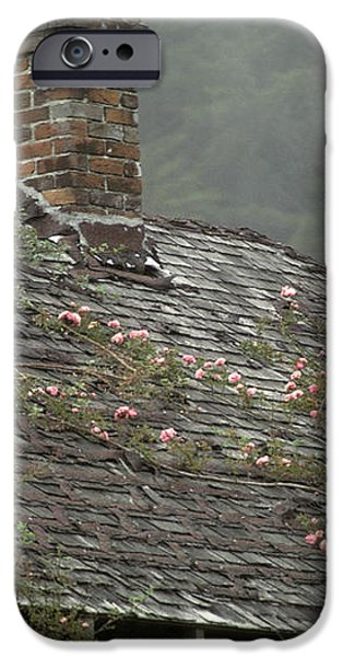 Climbing Roses iPhone Case by Ron Sanford