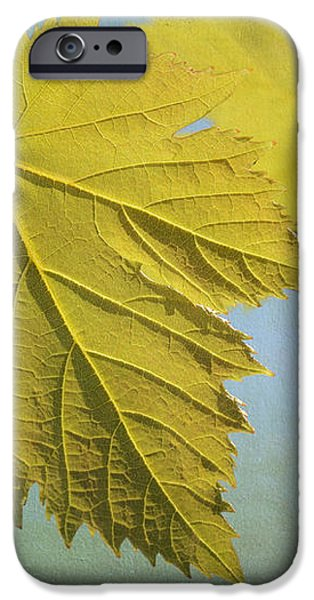 Clinging To The Vine iPhone Case by Fraida Gutovich