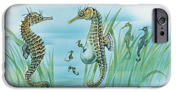 Fish Drawings iPhone Cases - Close-up of a male sea horse expelling young sea horses iPhone Case by English School
