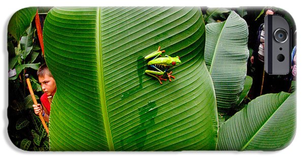 Red Eye iPhone Cases - Close-up Of A Red-eyed Tree Frog iPhone Case by Panoramic Images
