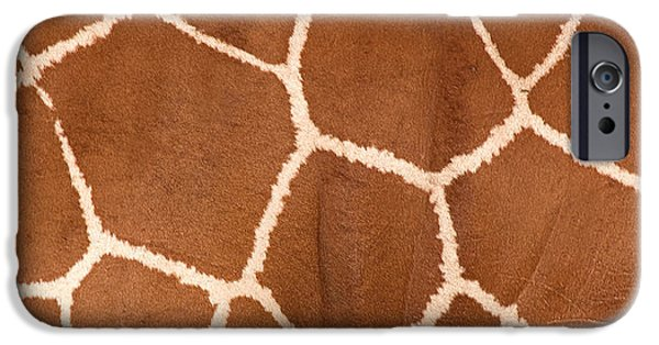 Recently Sold -  - Animals Photographs iPhone Cases - Close-up Of A Reticulated Giraffe iPhone Case by Panoramic Images