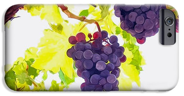 Malbec iPhone Cases - Close Up of Red Wine Grapes Hanging on the Vine on a Sunny Day iPhone Case by Lanjee Chee