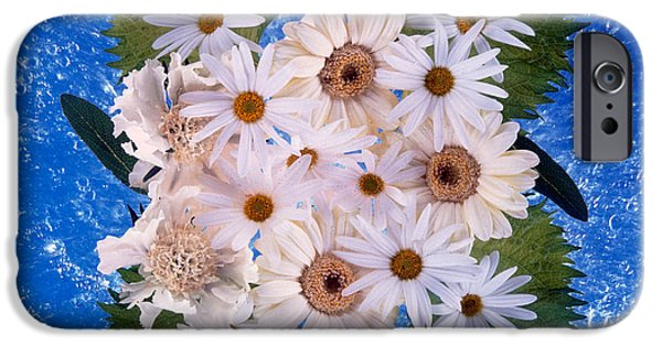 White Daisies iPhone Cases - Close Up Of White Daisy Bouquet iPhone Case by Panoramic Images