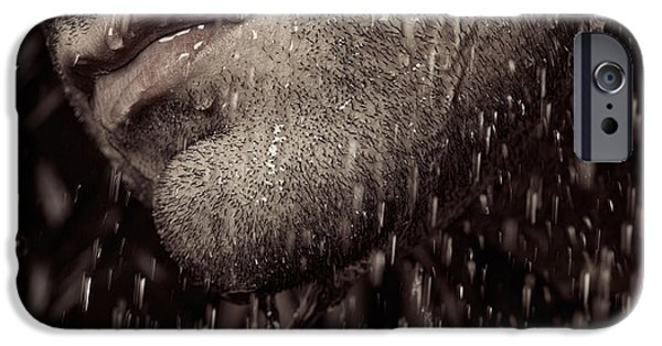Chin Up Photographs iPhone Cases - Closeup of mans chin with stubble iPhone Case by Oleksiy Maksymenko
