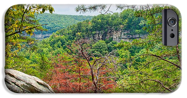 Nature Abstracts iPhone Cases - Cloudland Canyon State Park Georgia iPhone Case by John Bailey
