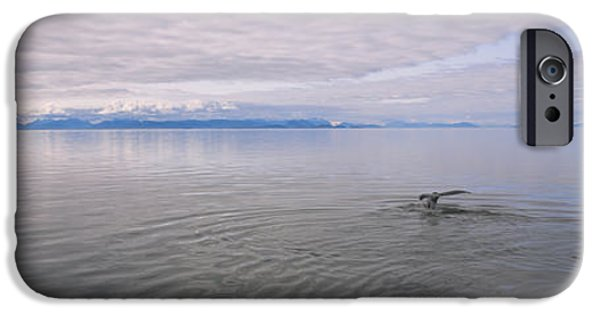 Animals Photographs iPhone Cases - Clouds Over The Sea, Frederick Sound iPhone Case by Panoramic Images
