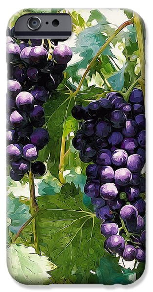 Malbec iPhone Cases - Clusters of Red Wine Grapes Hanging on the Vine iPhone Case by Lanjee Chee