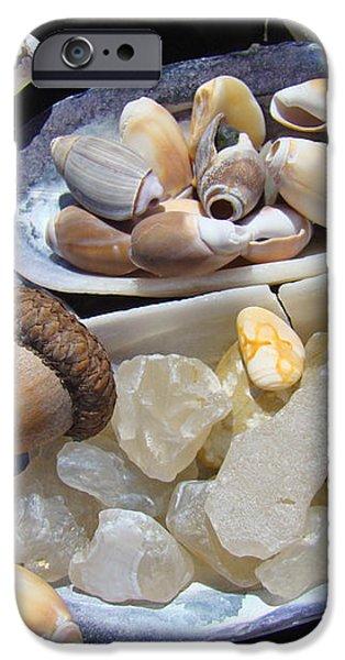 Coastal Beach art Prints Agates Shells Acorn iPhone Case by Baslee Troutman Coastal Art Prints