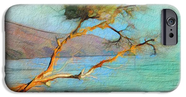 Pines iPhone Cases - Coastal Cypress iPhone Case by Bob Galka