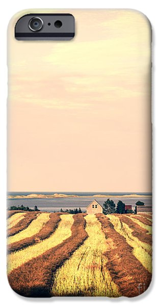 Prince iPhone Cases - Coastal Farm PEI iPhone Case by Edward Fielding