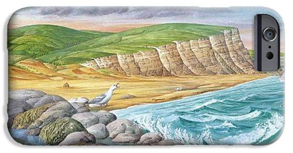 Flying Seagull iPhone Cases - Coastal Geography, Artwork iPhone Case by Gary Hincks