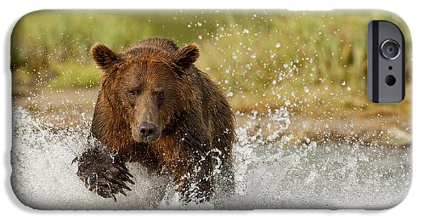 Dexterity iPhone Cases - Coastal Grizzly Boar Fishing At iPhone Case by Kent Fredriksson