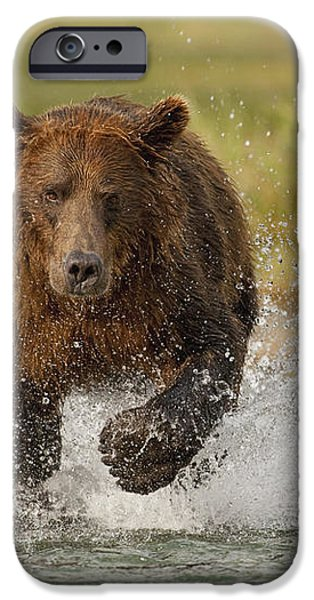 Coastal Grizzly Boar Fishing iPhone Case by Kent Fredriksson