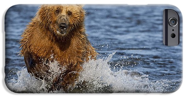 Dexterity iPhone Cases - Coastal Grizzly Fishing In Hallo Bay iPhone Case by Kent Fredriksson