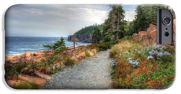 Maine Landscape iPhone Cases - Coastal Meandering iPhone Case by Lori Deiter