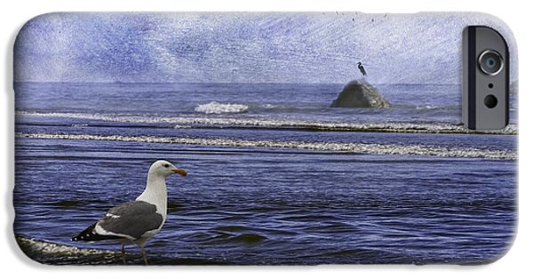 Sea Birds iPhone Cases - Coastal Moods Waiting For The Storm iPhone Case by Diane Schuster